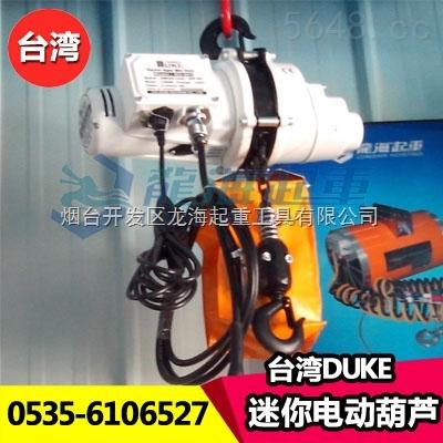 迷你DUKE电动葫芦,台湾品牌,速度10M/min,一年保期