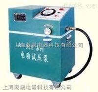 4DSB-2.5电动试压泵
